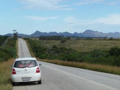 Webformat -South-Africa 2009b 1313